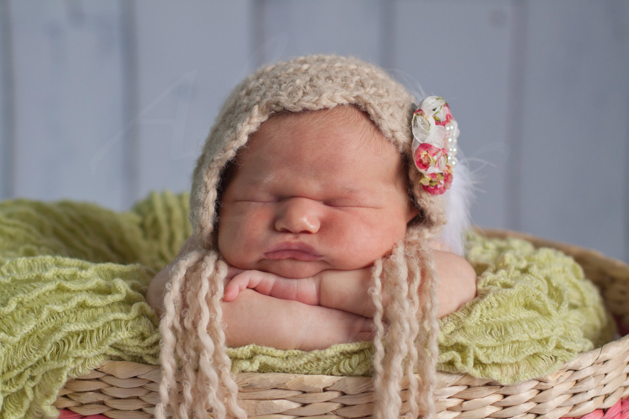 Newborns 026