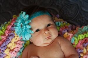 Newborns 016
